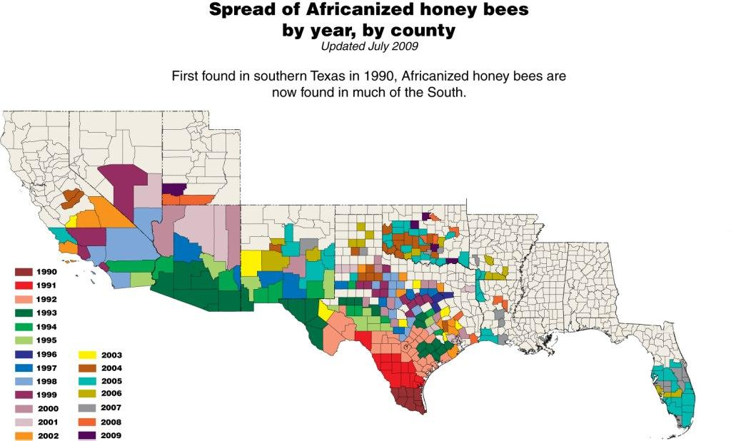 honey bees map